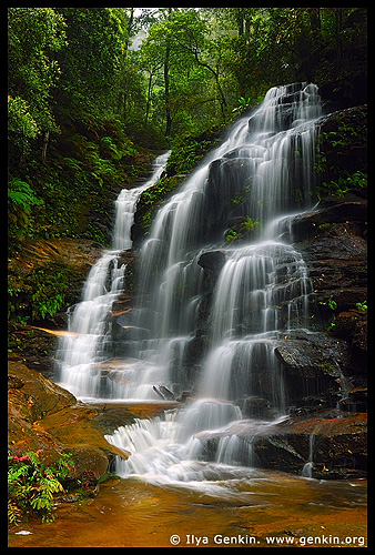 Sylvia Falls, Valley of the Waters, Wentworth Falls, Blue Mountains, NSW, Australia