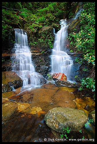 Lodore Falls, Valley of the Waters, Wentworth Falls, Blue Mountains, NSW, Australia