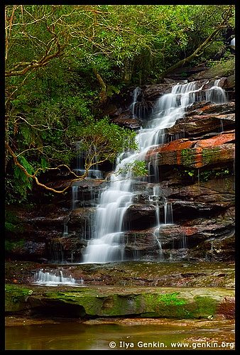 Upper Somersby Falls, Brisbane Water National Park, Central Coast, NSW, Australia