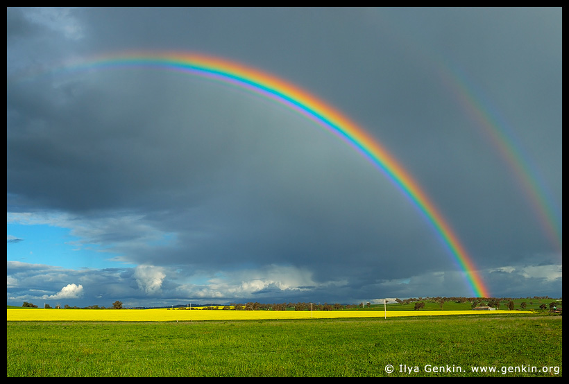 Double Rainbows over a Field of Canola, Wellington, central NSW, Australia